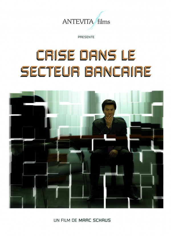 Crise dans le Secteur Bancaire